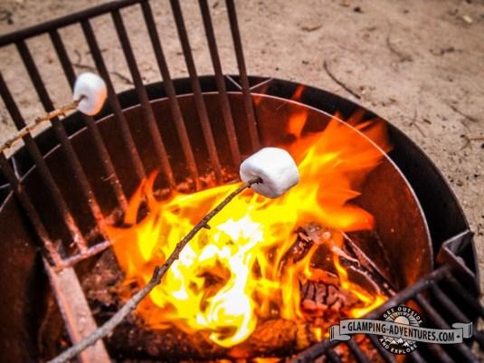 Roasting marshmallows. Kelly Dahl CG, Boulder County.