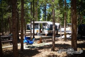 Campsite 1, GGCSP.