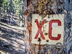 Looks like an old cross country ski trail marker. Snowshoe Hare Trail, Golden Gate Canyon S.P.
