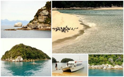 03 WilsonsAbel Tasman Boat Ride-HoneyTrek.com