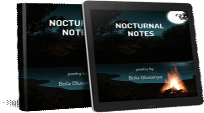 Nocturnal Notes