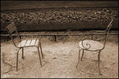Disparity. (Jardins du Luxembourg, Paris, décembre 2003.)