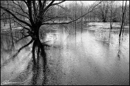 Shivering. (Parc Duberger, Canada, mai 2005.)
