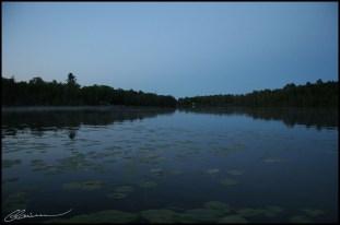 Listening to Nature. (St-Raphaël-de-Bellechasse, Québec, août 2006)