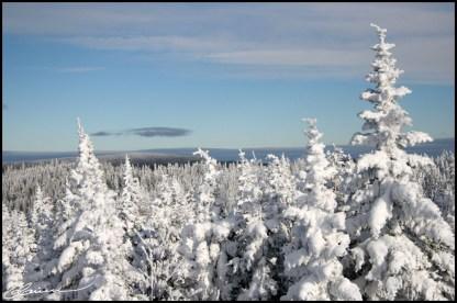 Sommet enneigé. (Massif du Sud, Québec, février 2007)