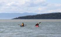 20150809_kayak_kamou-18