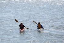20150809_kayak_kamou-21