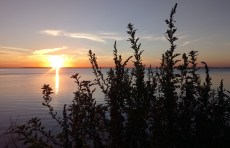 Coucher de soleil sur le lac St-Pierre (Léry, Québec, octobre 2016)