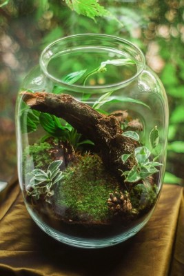 Ways to Make Your Home More Eco-Friendly