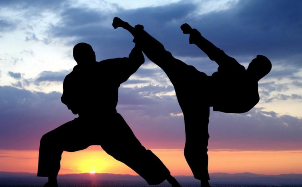 Image result for karate
