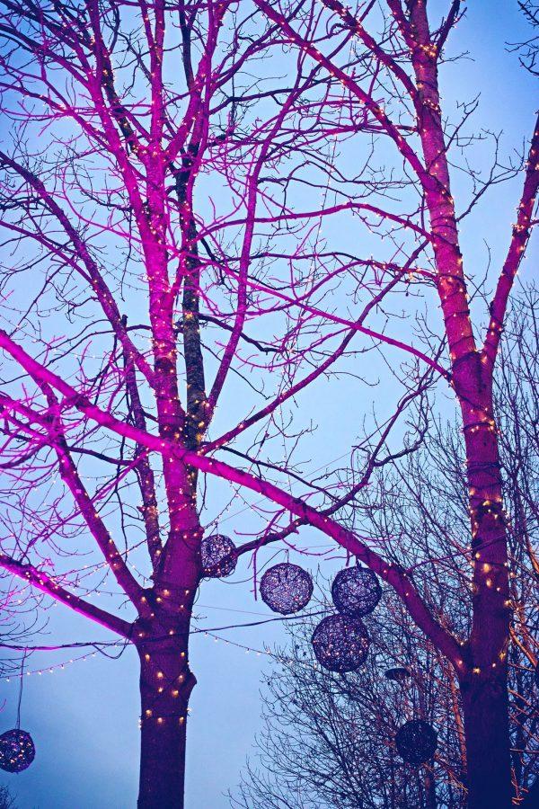 Brel Bar Garden Tree Lights