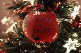 Buy a Bauble photo (2)