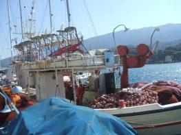 Greece March 2014 093boat