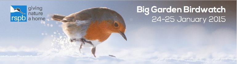 bird garden bird watch.jpg