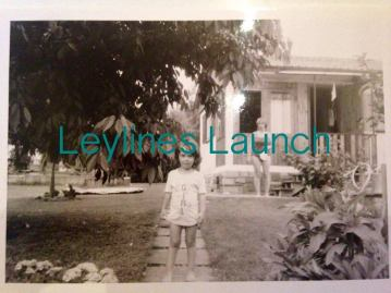 leylines launch