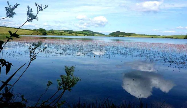 Loch Ascog