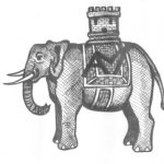 elephant book cover.jpg