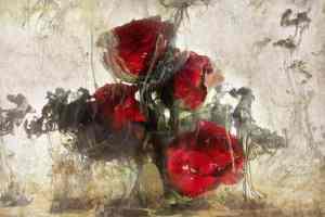 valentine 1 thistle