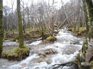 Glen Nevis Water