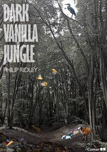 dark vanilla judge