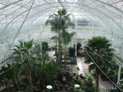 Peoples_Palace_Winter_Garden_-_geograph.org.uk_-_766659