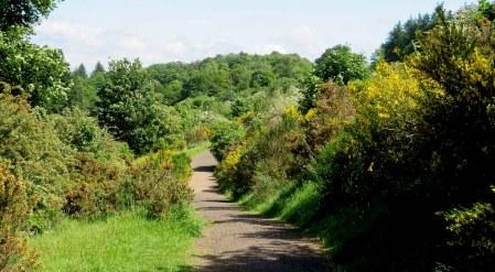 Tannahill Way. Gleniffer Braes