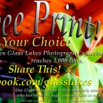 Print Giveaway Glass Lakes Photography