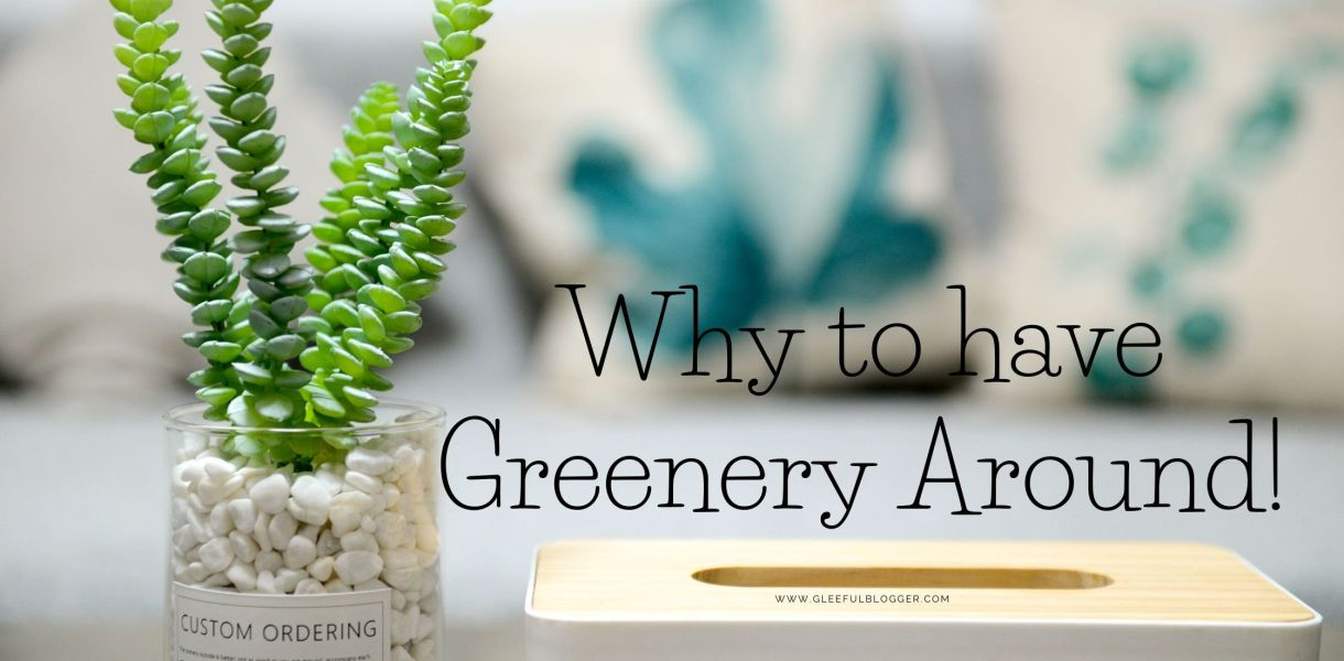 Greenery aound you