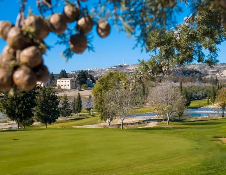 CYPRUS – 4* Alexander The Great Beach Hotel Golf Holiday & Golf Break Offers