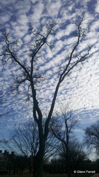 2012-01-06_14-35-31_981