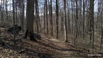2012-02-22 12.16.02
