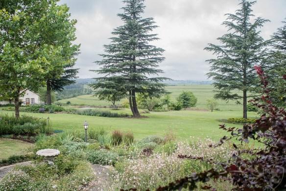 Views from Glen Ormond