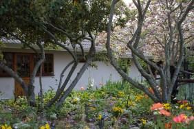 Gardens (69)