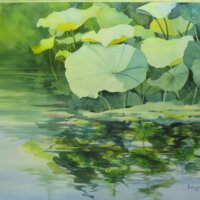 Lotus Reflections by Mary Ann Phelan