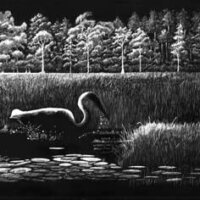 Marsh Waterdance by Leslie Scott