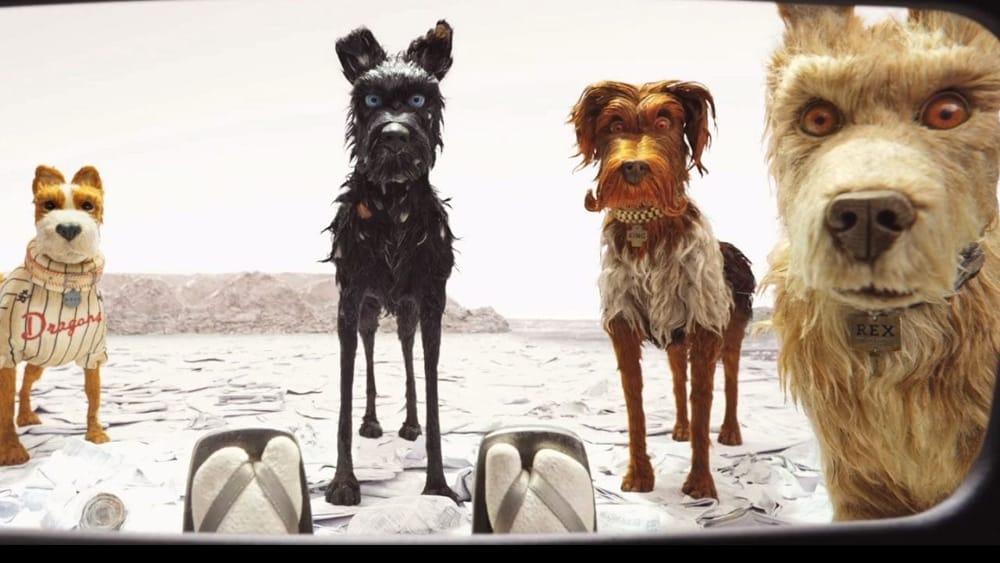 L'isola dei cani - Isle of Dogs (2018): il piccolo principe in stile Wes Anderson 1