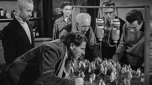 """La cosa da un altro mondo (1951): """"la cosa"""" prima di Carpenter 6"""