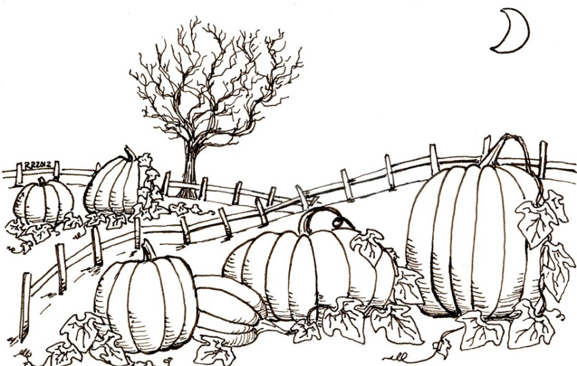 pumpkin patch – glimmerville