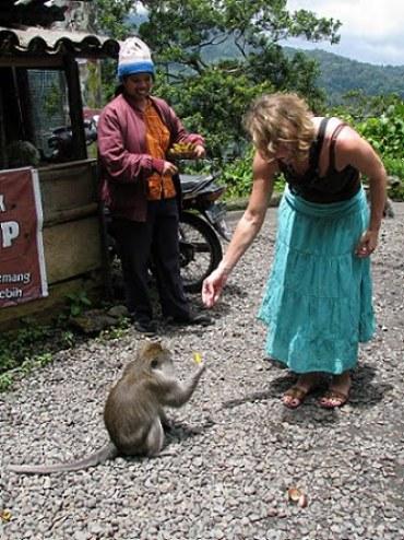 Travel-to-Bali-feeding-monkeys-Glimpses-of-The-World