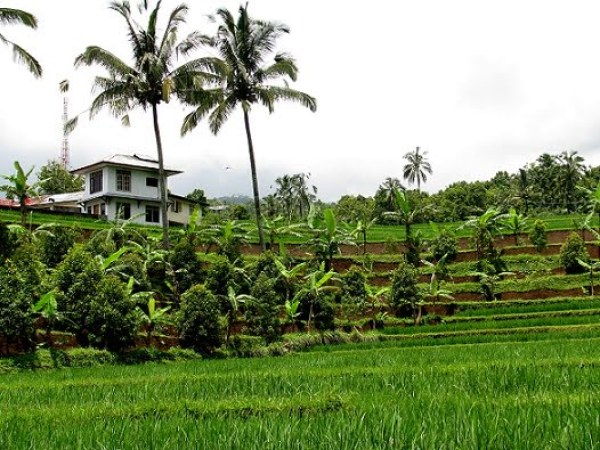 Travel-to-Bali-inland-landscape-Glimpses-of-The-World