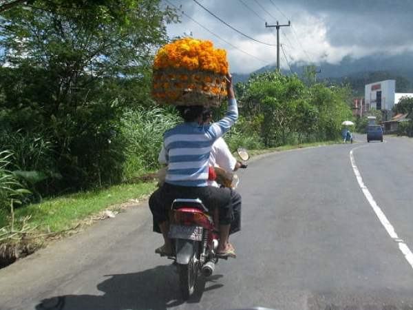 Travel-to-Bali-ride-Glimpses-of-The-World