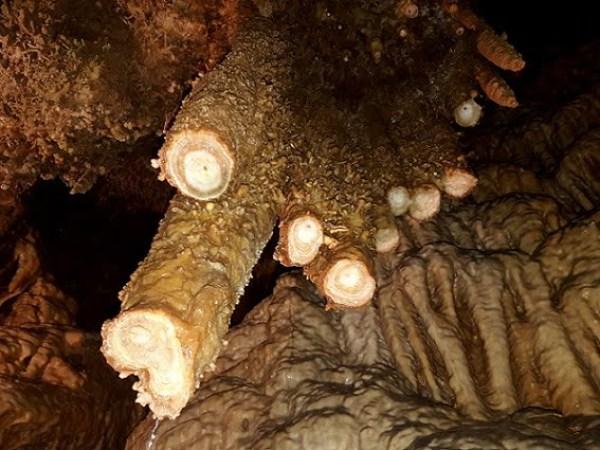 Serbia-travel-Despotovac-Resava-cave-Glimpses-of-The-World
