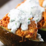 chipotle chicken avocados