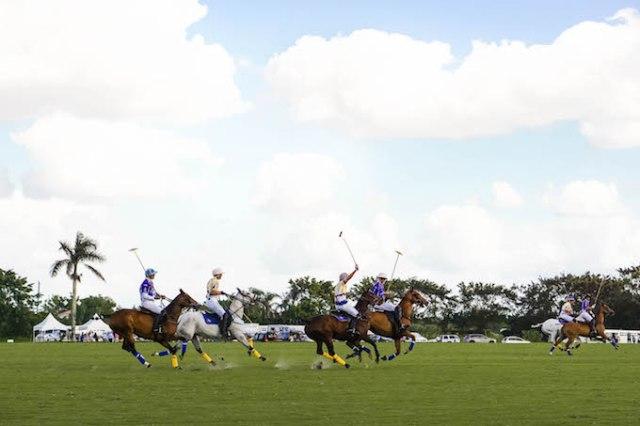 Palm Beach International Polo Club match