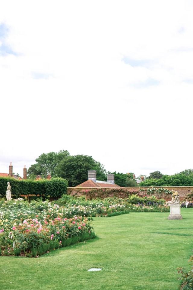 Rose Gardens at Hampton Court Palace