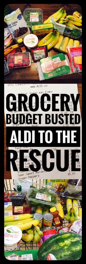 Saving Money shopping ALDI sales