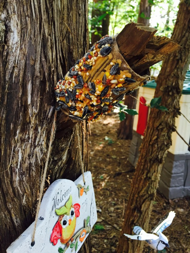 cardboard tube DIY bird feeders