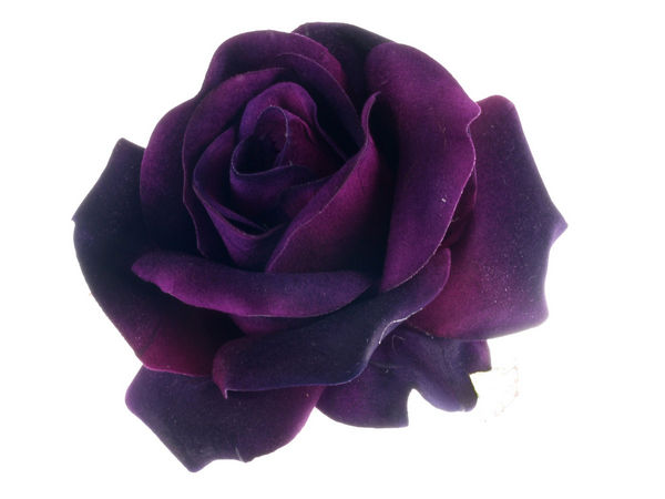 Beautiful Girl Hand Wallpaper Purple Velvet Gala Rose Hair Clip Corsage Buy 1 Get 1 Free