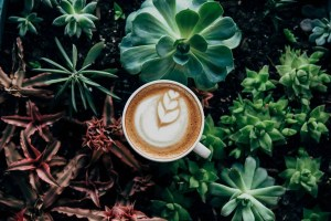 7 surprising ways coffee can be used in your beauty routine