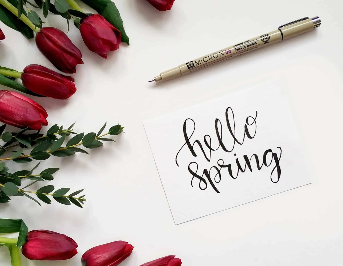 What I'm most looking forward to about Spring
